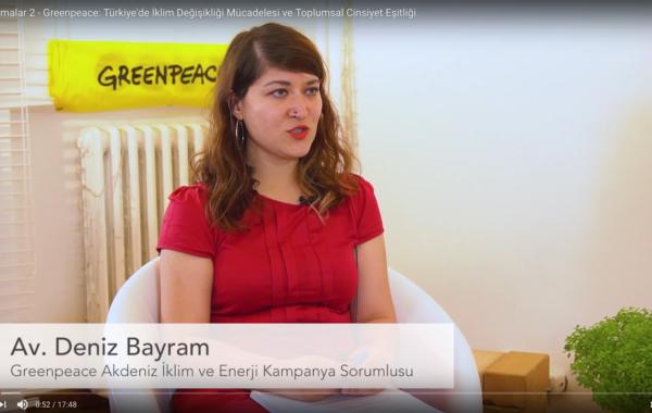 Karşılaşmalar 2: Greenpeace